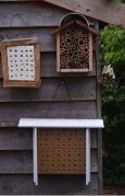 5 star insect hotels (Photo: Ryan Clarke)