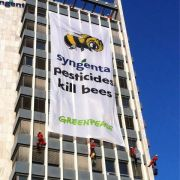 Greenpeace campaign against Syngenta HQ, Basel